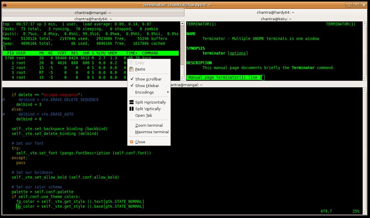 Terminator 0 9 beta 1 - Debuntu