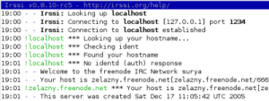 irssi connecting to irc.freenode.net through a tunnel on localhost port 1234